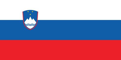Slowenisch- Einstufungstest
